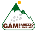 Logo GAM Sarezzo Sant'Emiliano