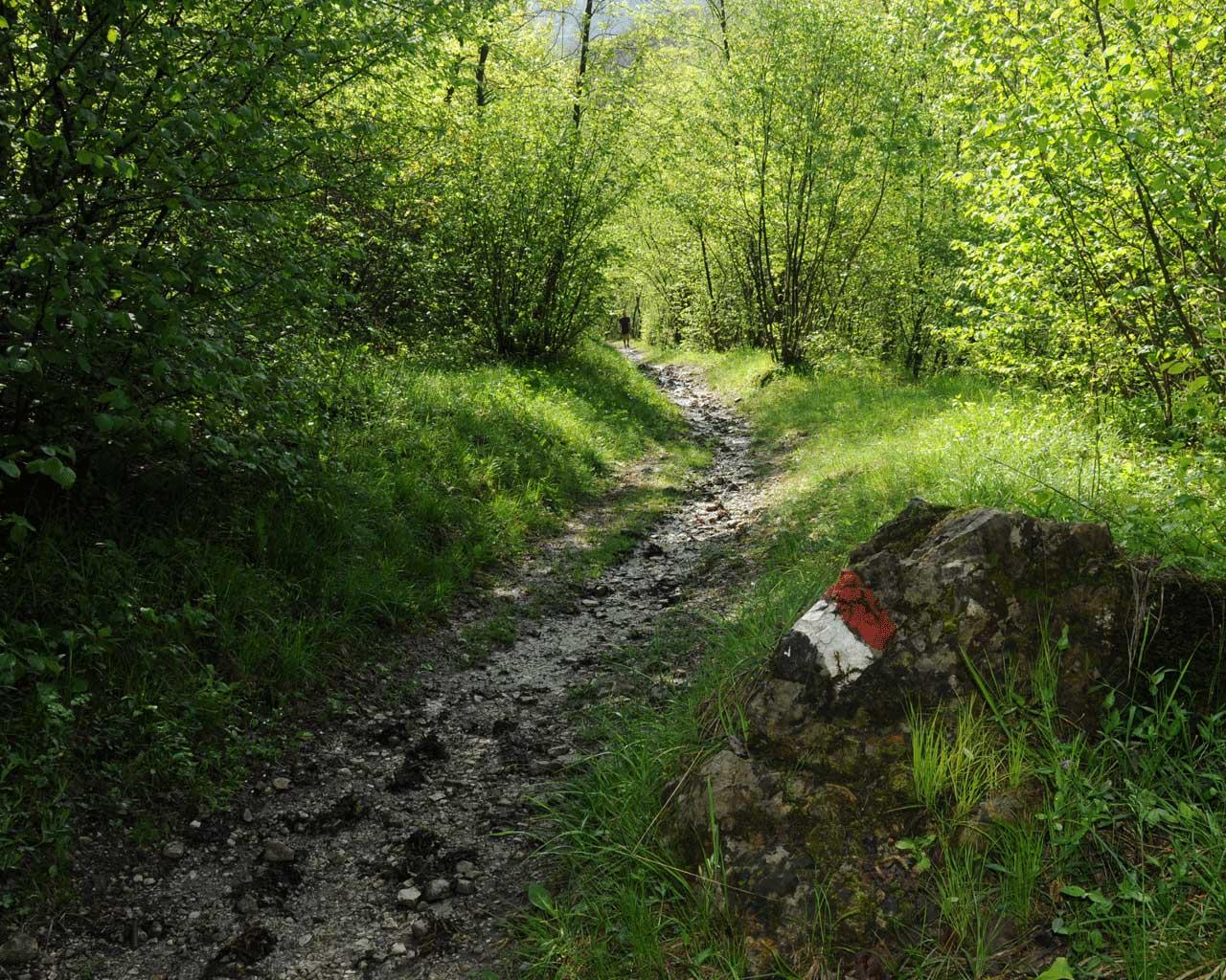 Un segnale biancorosso su una roccia lungo il sentiero 361 Cai